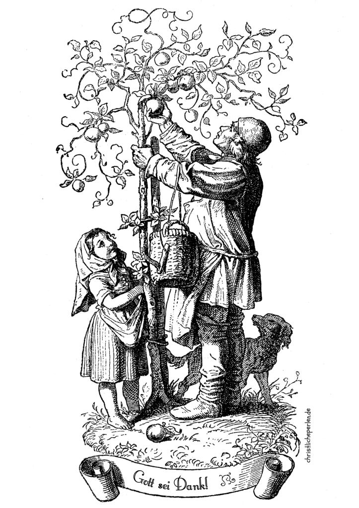Christliche Weihnachtsbilder Zum Ausdrucken.Ausmalbilder Zur Bibel Christliche Perlen Bibel Faith