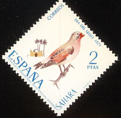 Trumpeter Finch stamps - mainly images - gallery format