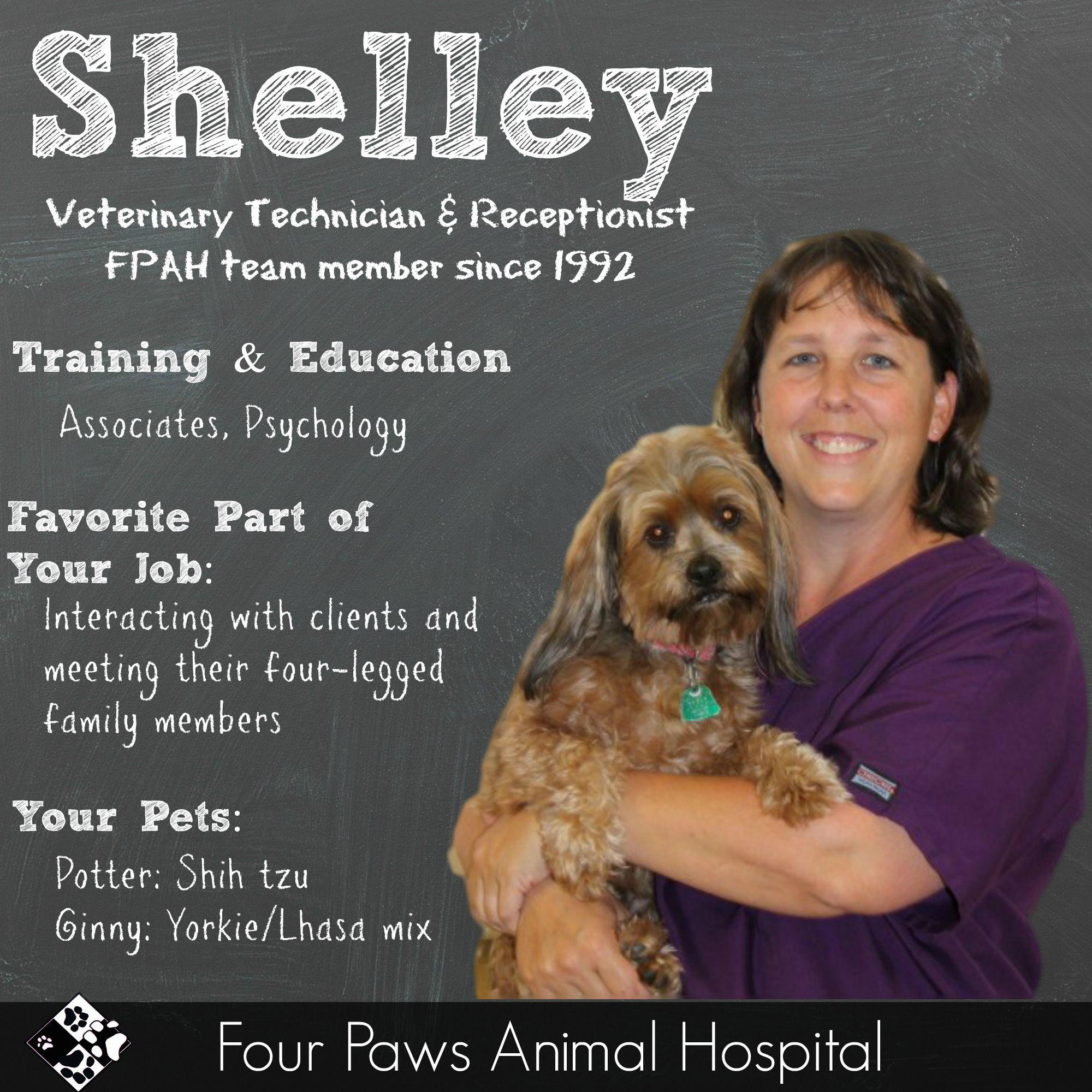 Shelley Animal Hospital Veterinary Technician Animals