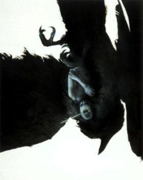"Sam Weber ""The Crow Procedure"""