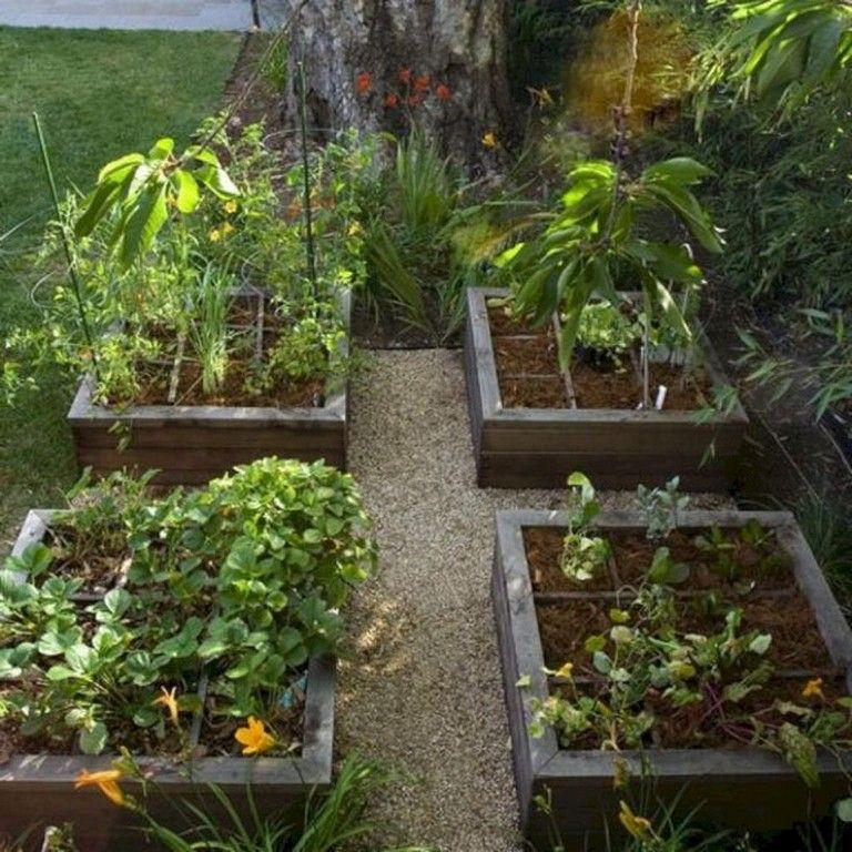 20 Best Productive Small Vegetable Garden Ideas For Your Small Backyard Vegetables Gardenideas Backyard Small Backyard Backyard Small Vegetable Gardens