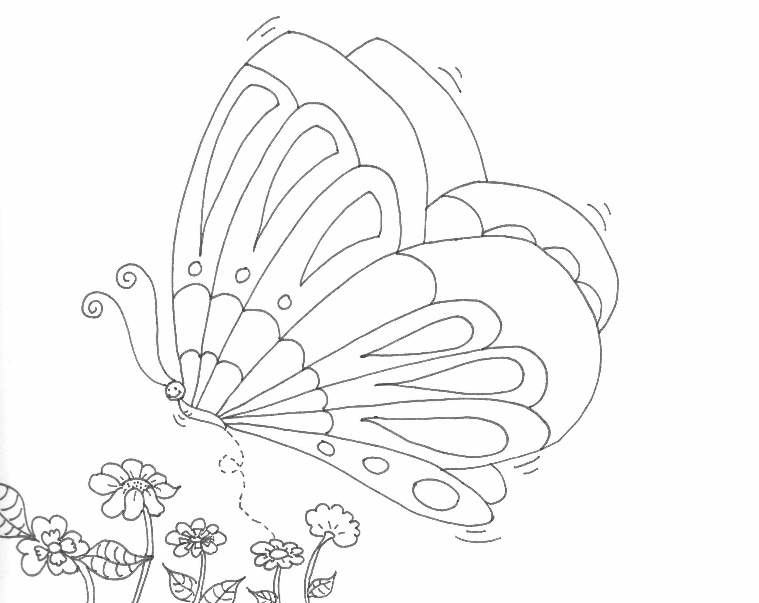 pillangó rajz, drawing butterfly, coloring page, színező