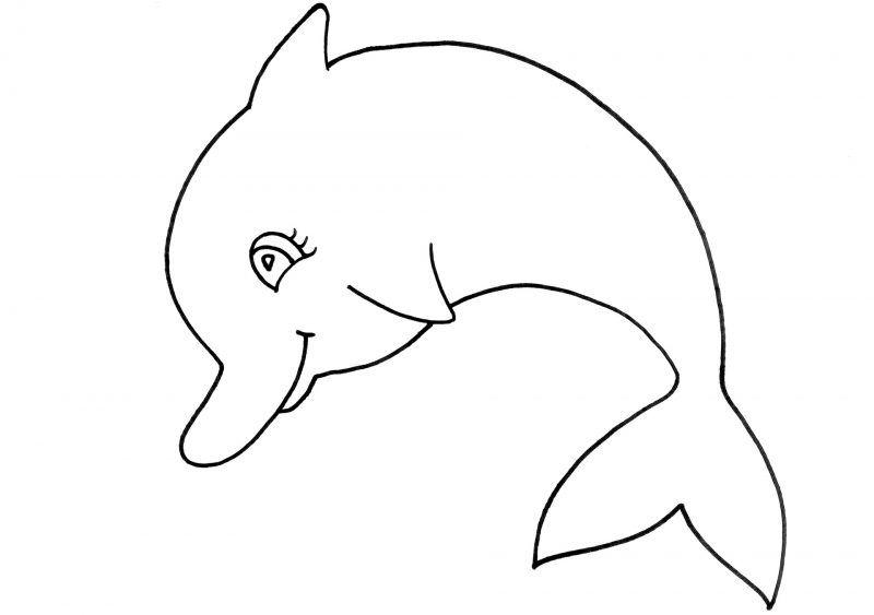 Delfin para colorear | Dibujos para colorear | Pinterest | Delfines ...