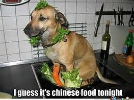 Why do asians eat dogs