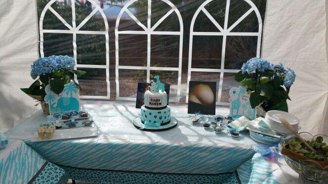 Blue safari  baby shower