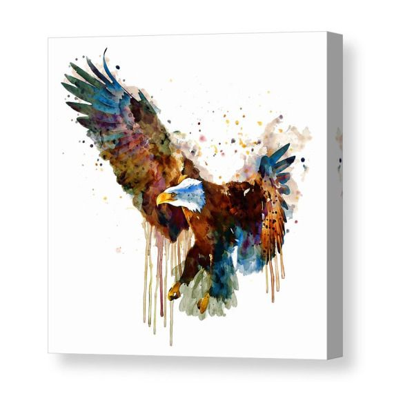 colorful animal wall art illustration poster contemporary art nature bird canvas Eagle watercolor painting print