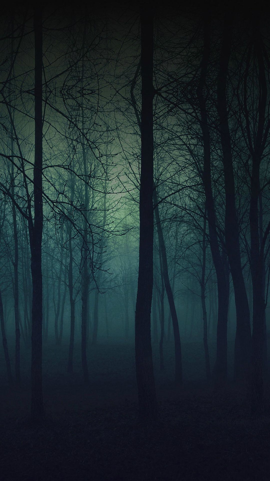 eerie forest night iphone 6 plus hd wallpaper
