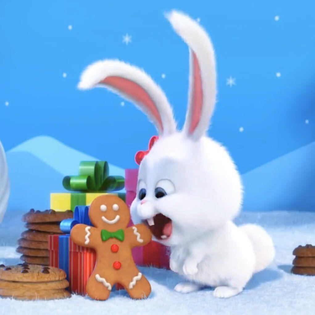 Pin By メ On Snow Ball Cute Bunny Cartoon Rabbit Wallpaper Cute Disney Wallpaper