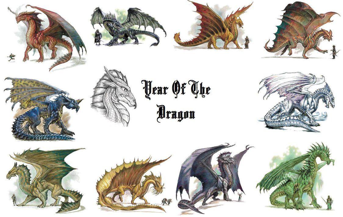 year of the dragon wallpaperdragonsheart87 on