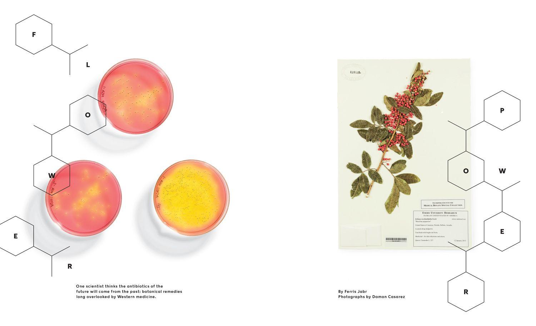Assorted NYTM - Frank Augugliaro /// Art Direction & Design
