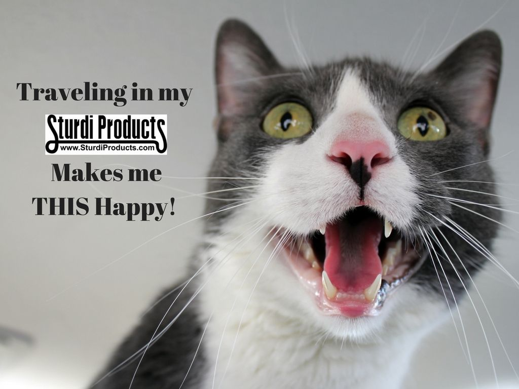 How Happy Is Your Pet In Their Sturdibag Cat Bad Breath Bad Breath Halitosis