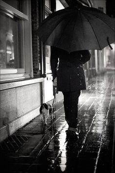 Rainy Night Walk