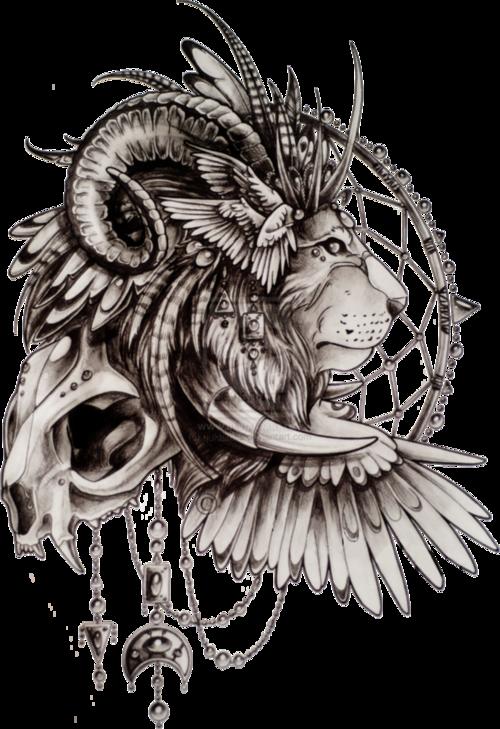 Dream Catcher Lion Tattoo Google Search Lion Sketch Tattoo Sketches Tattoos