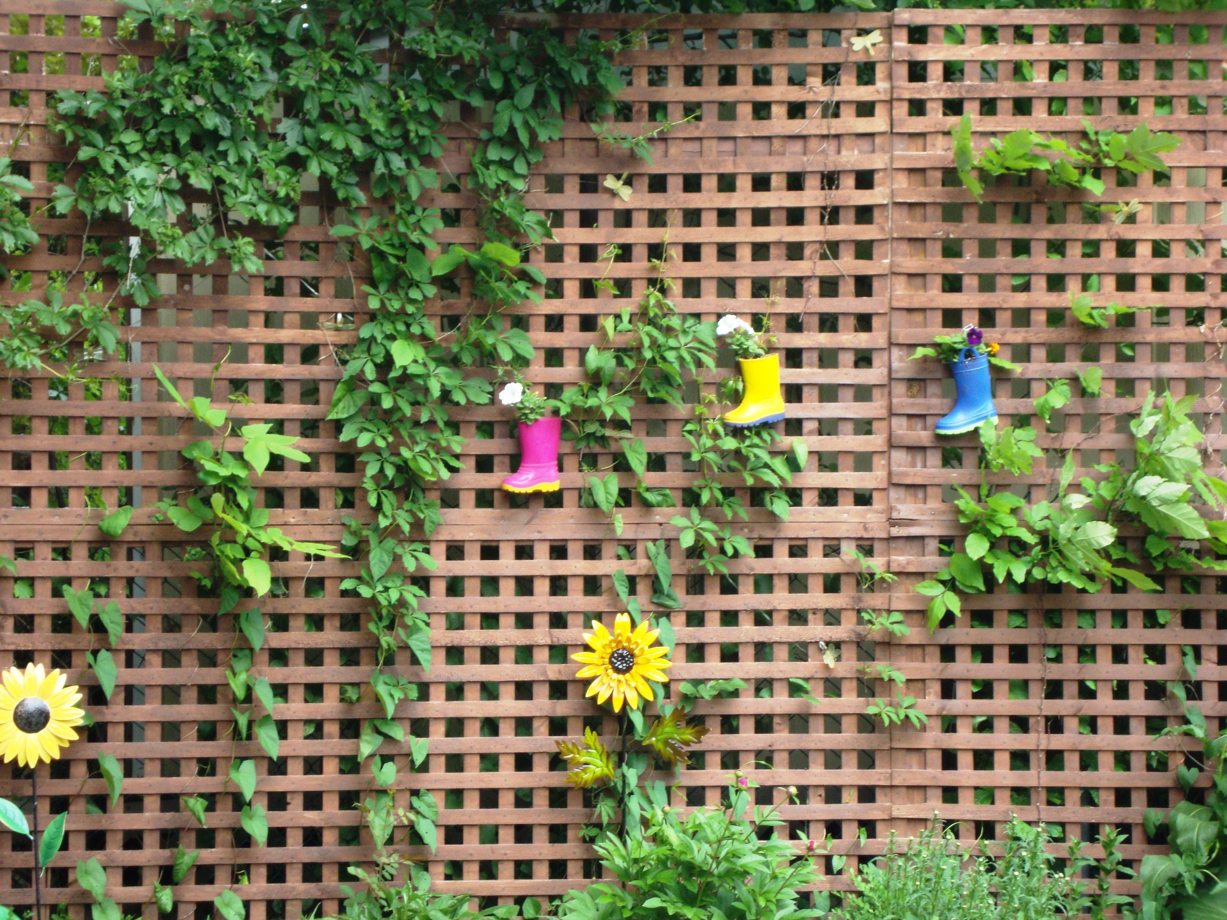 Garden Ideas To Hide A Wall erected a lattice wall to hide the ugly sheds both my neighbours