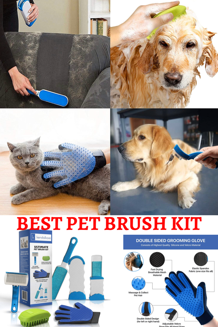 Best Pet Brush Kit You Never Seen Before 2020 In 2020 Dog Brushing Pet Brush Small Pets