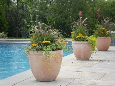 Princeton Home And Garden 05 2010 06 2010 Plants Around Pool Pool Planters Backyard Pool Landscaping