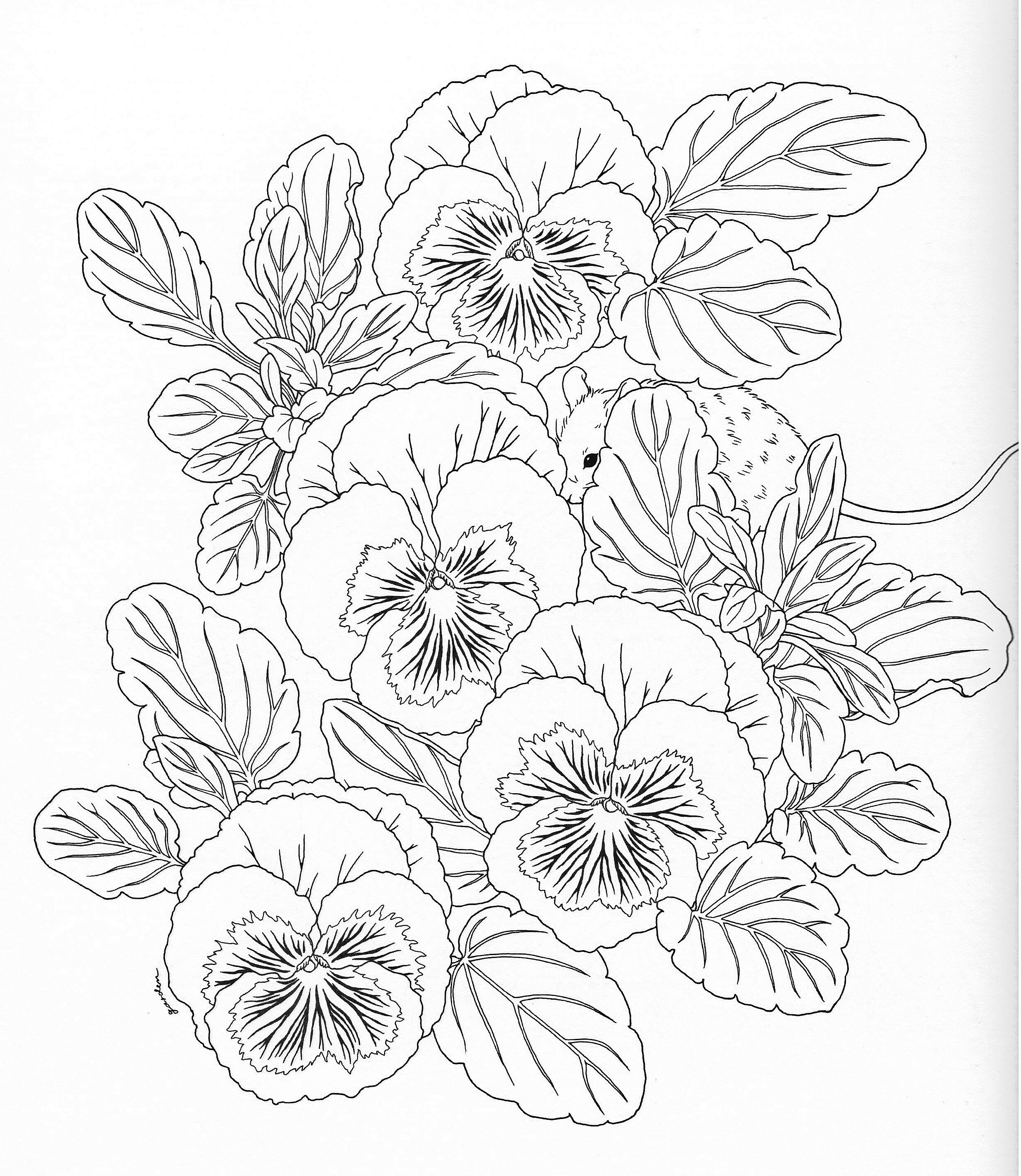 Harmony Of Nature Adult Coloring book Pg 11   Color pages, Stencils ...