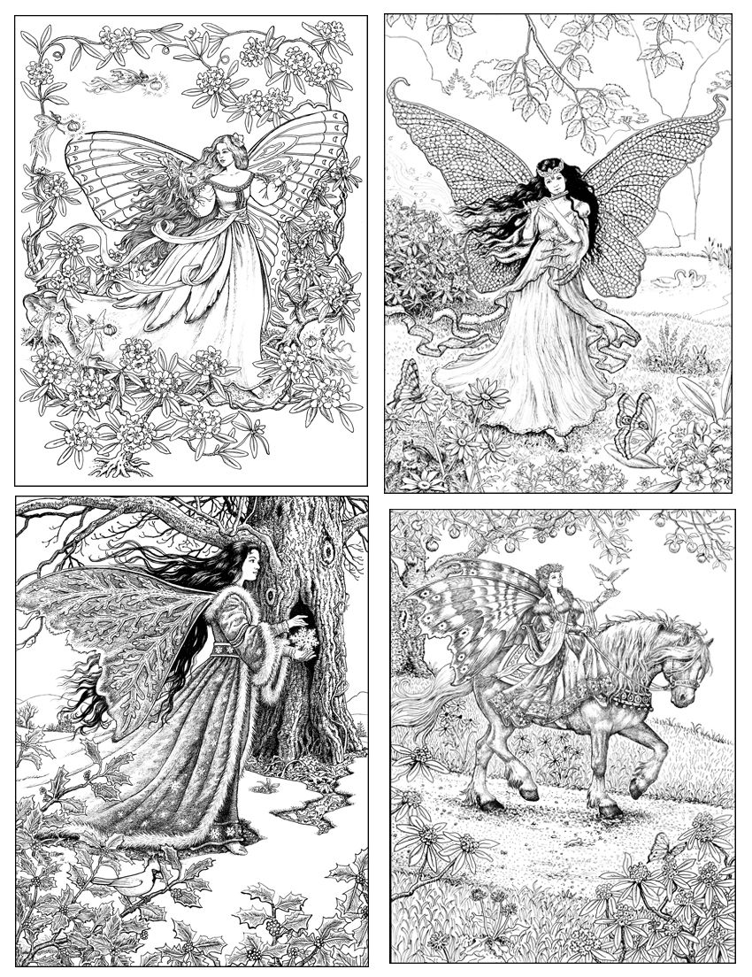 regal fairies from the world of fairies coloring book for adults
