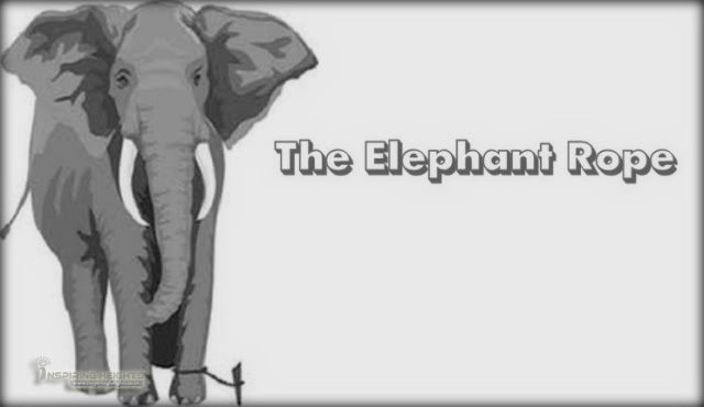 The Elephant Rope (Moral Story)