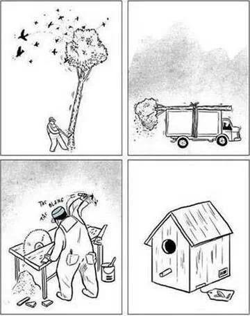 La casa de pájaro