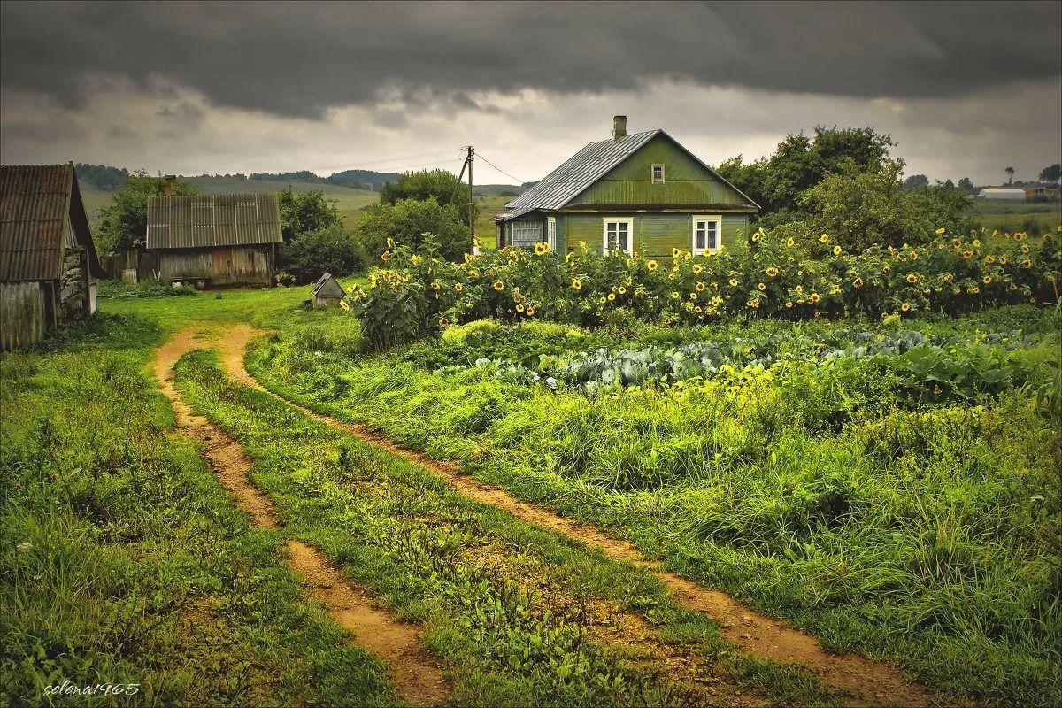 красивые пейзажи деревни картинки дело возбуждено