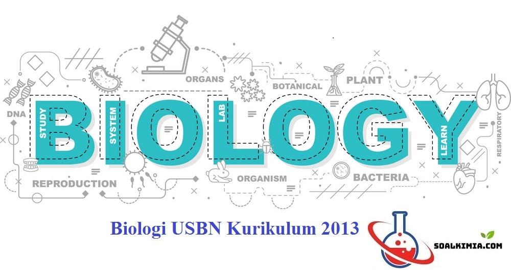 Contoh Soal Biologi Usbn Kurikulum 2013 Pilihan Ganda Dan Jawaban Usbn Ujian Sekolah Berstandar Nasional Ialah Ujian Nasional Di Biologi Kurikulum Sekolah