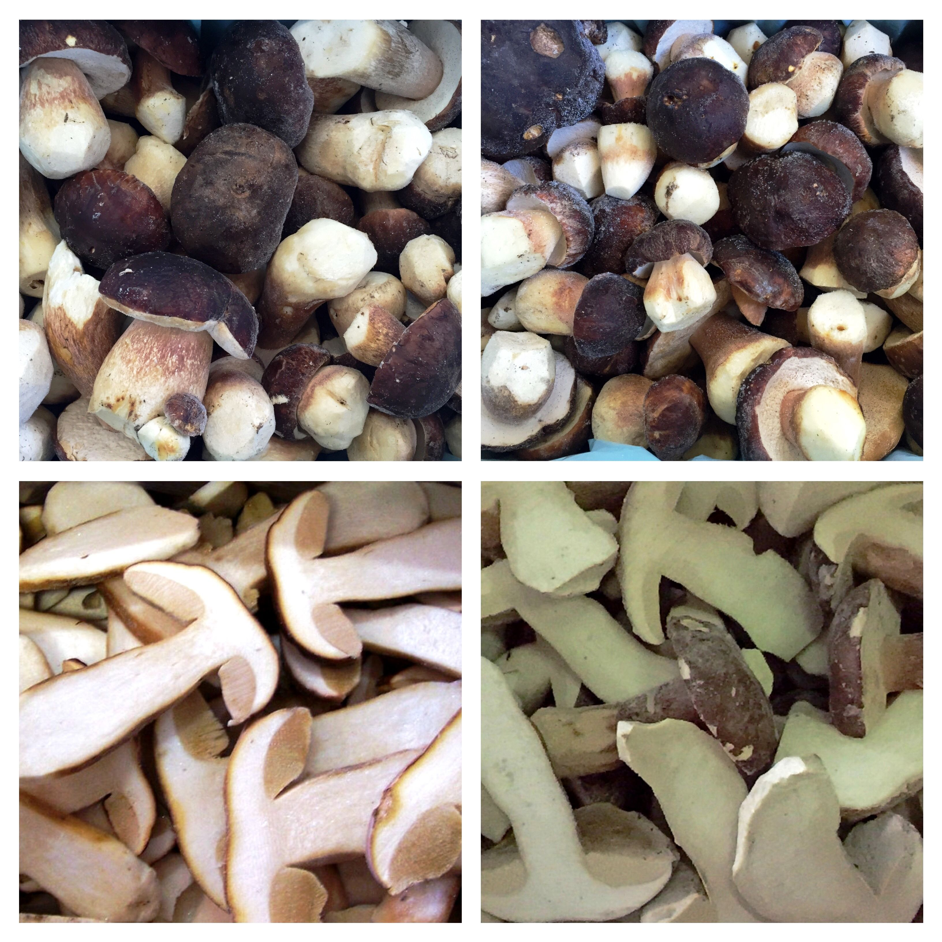 Porcini mushrooms frozen, whole, half and sliced. Aleramica Funghi Ltd. 03-04-2015