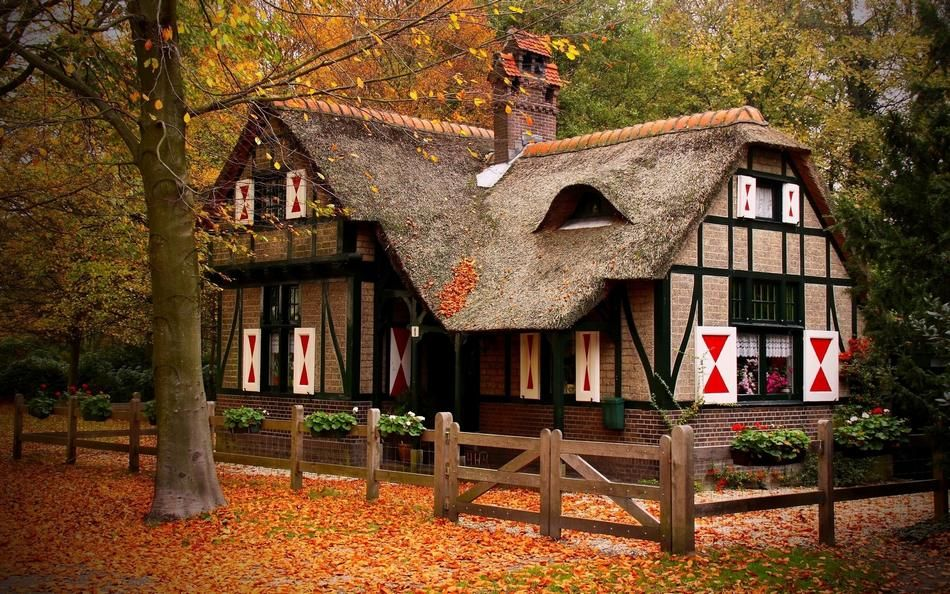 Top 10 World S Most Beautiful Forest Houses House In Nature