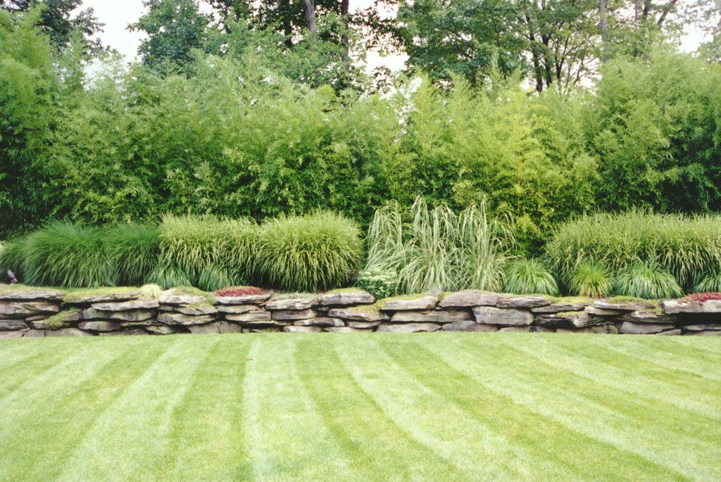Bamboo And Ornamental Grass Garden In Bergen County Nj