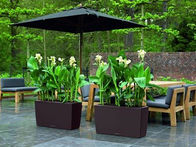 Showcase Your Plants With These 14 DIY Pots | Garden planters ... on modern garden pots, modern garden beds, modern herb garden, modern garden fountains, modern herb planter, modern garden decor, modern garden trees, modern garden plants, modern garden statues, modern garden pools, modern garden arbors, modern garden tractors, modern garden art, modern garden trellis, modern garden walkways, modern garden home, modern garden lamps, modern garden signage, modern garden mirrors, modern garden tools,