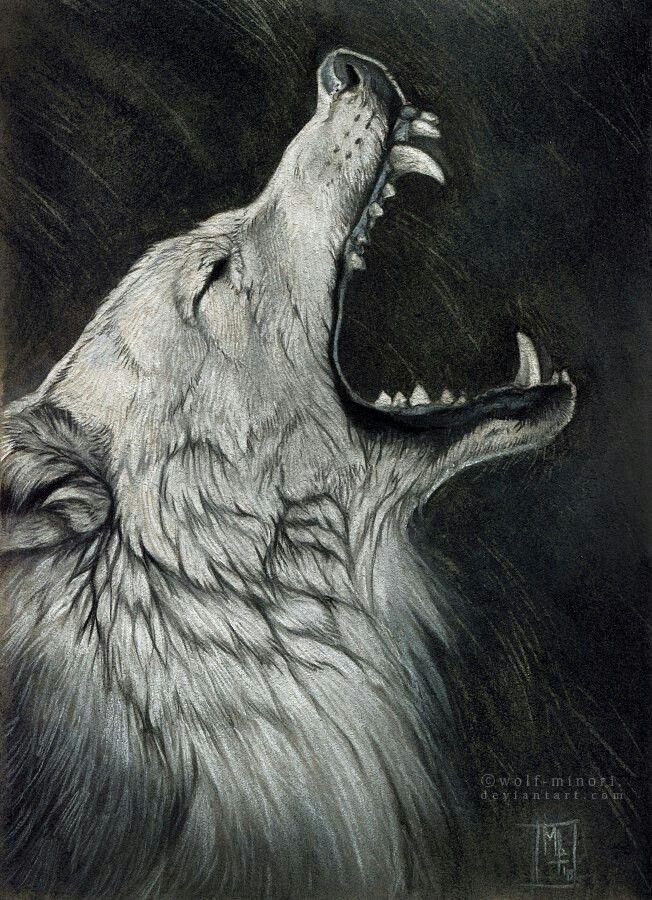 Грустный волк рисунок