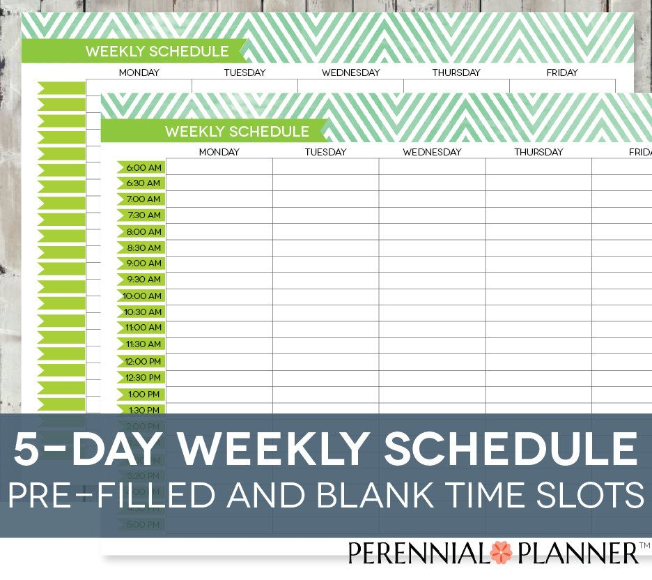 Daily Schedule Printable Editable Times HalfHourly Weekly Weekday
