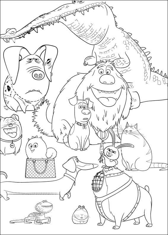 The Secret Life of Pets Coloring Pages 24 | Secret life of ...
