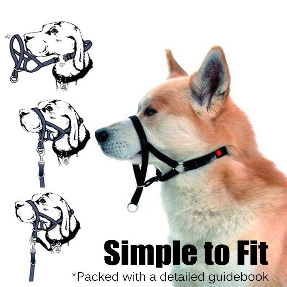 Barkless Dog Head Collar No Pull Training Tool For Dogs On Walks