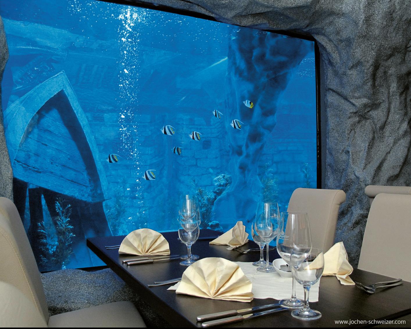 taucht ein in eine romantische unterwasserwelt und lasst