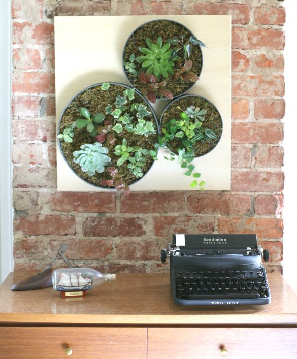 Elegant 16 DIY Wall Planters Teach You How To Greenify Your Home. Succulent Wall  GardensSucculent ...