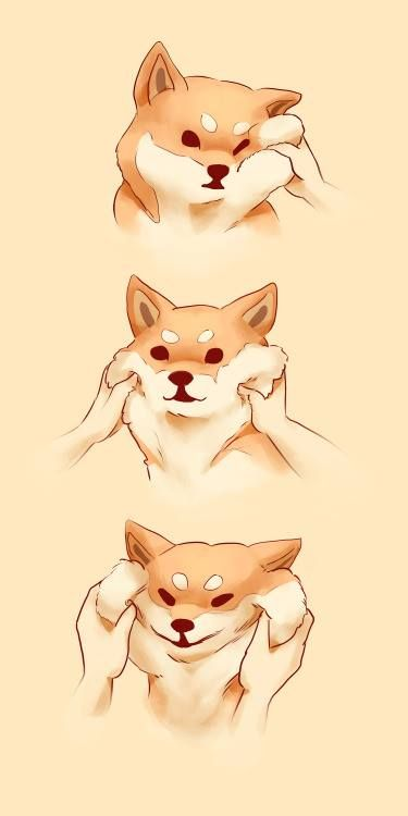 Shiba Inu Comics So Much Fluff Cute Drawings Cute Art Shiba Inu
