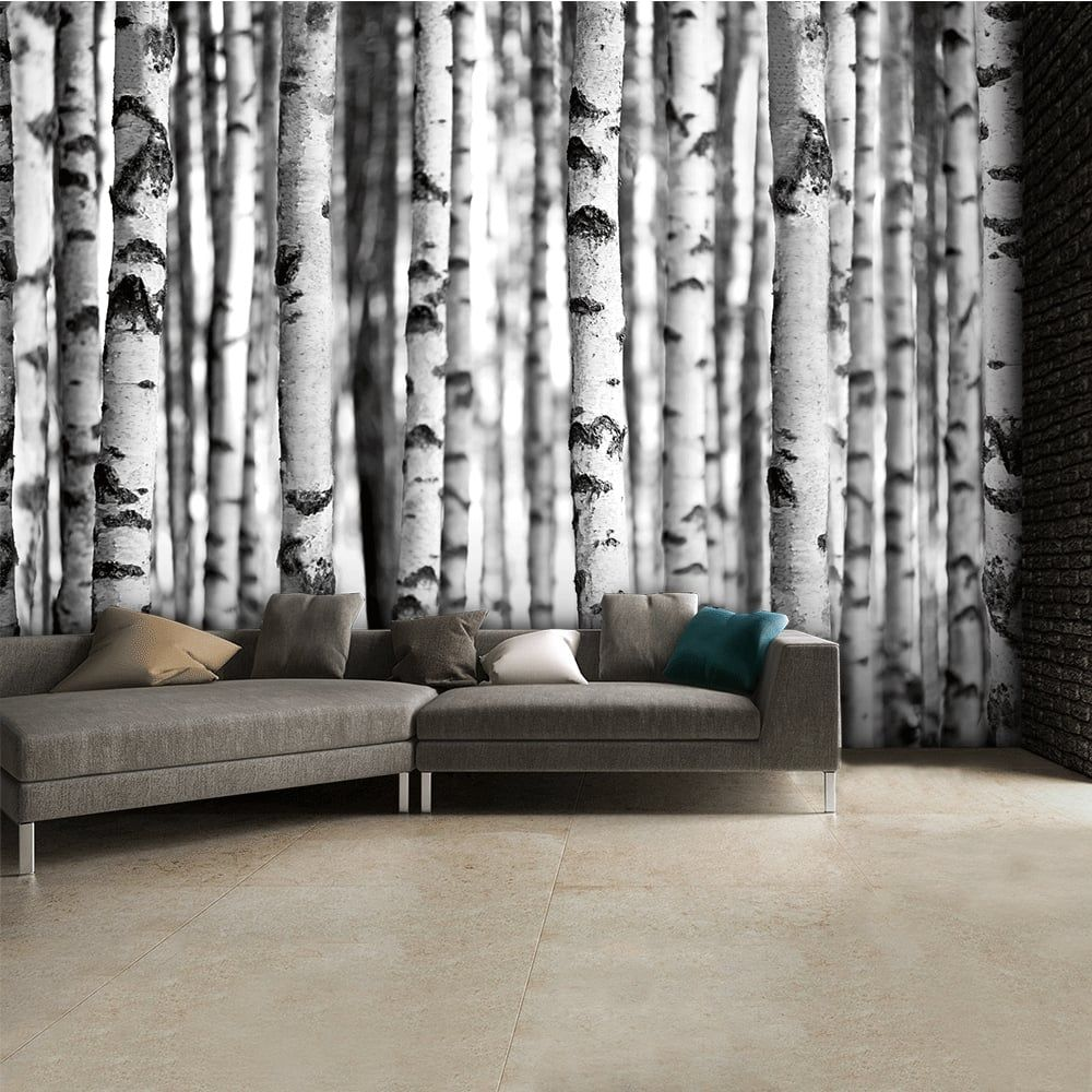 Black And White Birch Trees Wall Mural   315cm X 232cm