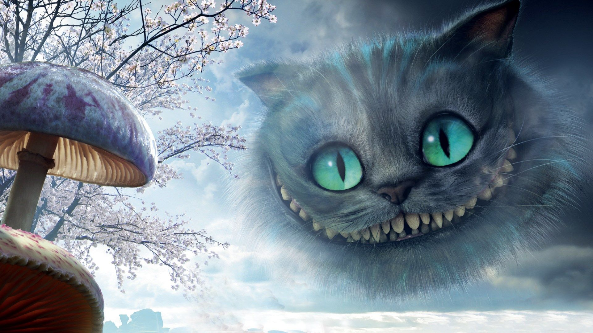 1920x1080 Cheshire Cat Wallpaper Hd Backgrounds Images Jpg 445 Kb