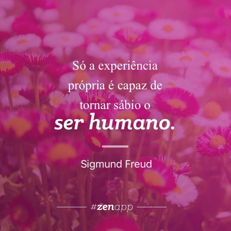 Só a experiência própria é capaz de tornar sábio o ser humano. #zenapp