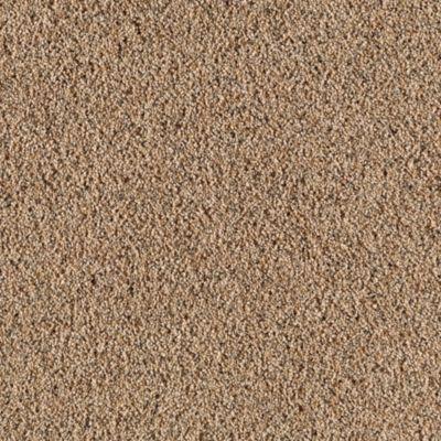 Mushroom Color Texture Living Room Carpet