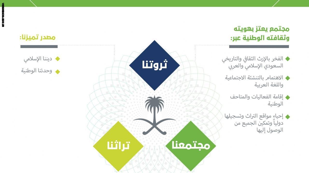 بالصور رؤية السعودية 2030 تشرح استراتيجية المستقبل عبر الانفوجرافيك Pie Chart Infographic Oio