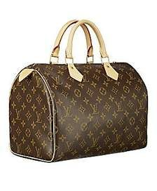 luis vuitton speedy