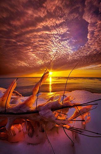 Became Entwined | Sunrise on the shore of Lake Michigan in W… | Flickr