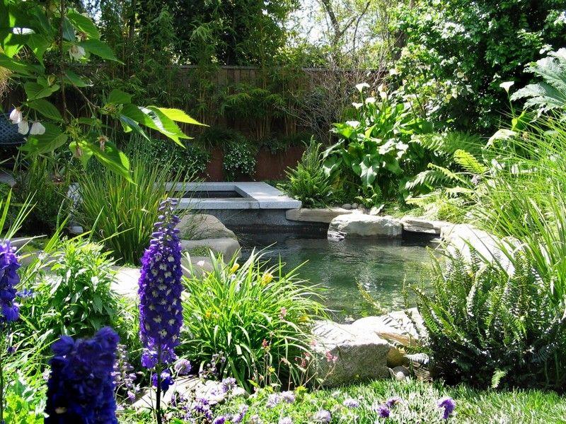 Gartenteich bauen \u2013 Gestaltungsmöglichkeiten eines Wassergartens