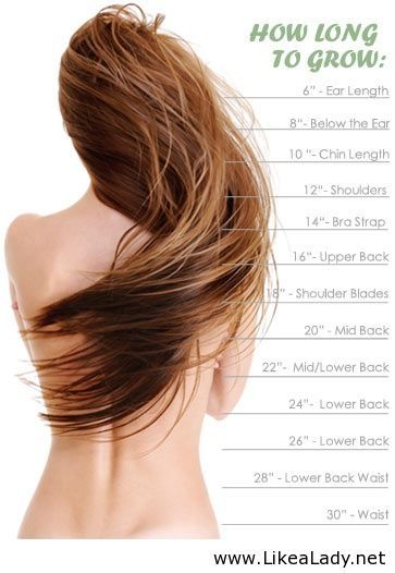 Nice chart to help you determine what length your hair is or what length extensions you want:) www.tmghairextensions.com