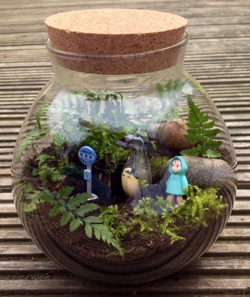 my neighbour totoro terrarium kit with container figures live fern and moss totoro terraria. Black Bedroom Furniture Sets. Home Design Ideas