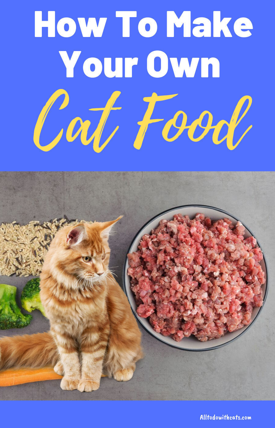 How To Make Your Own Cat Food For A Healthy Kitty In 2020 Healthy Cat Food Homemade Cat Food Raw Cat Food Recipes