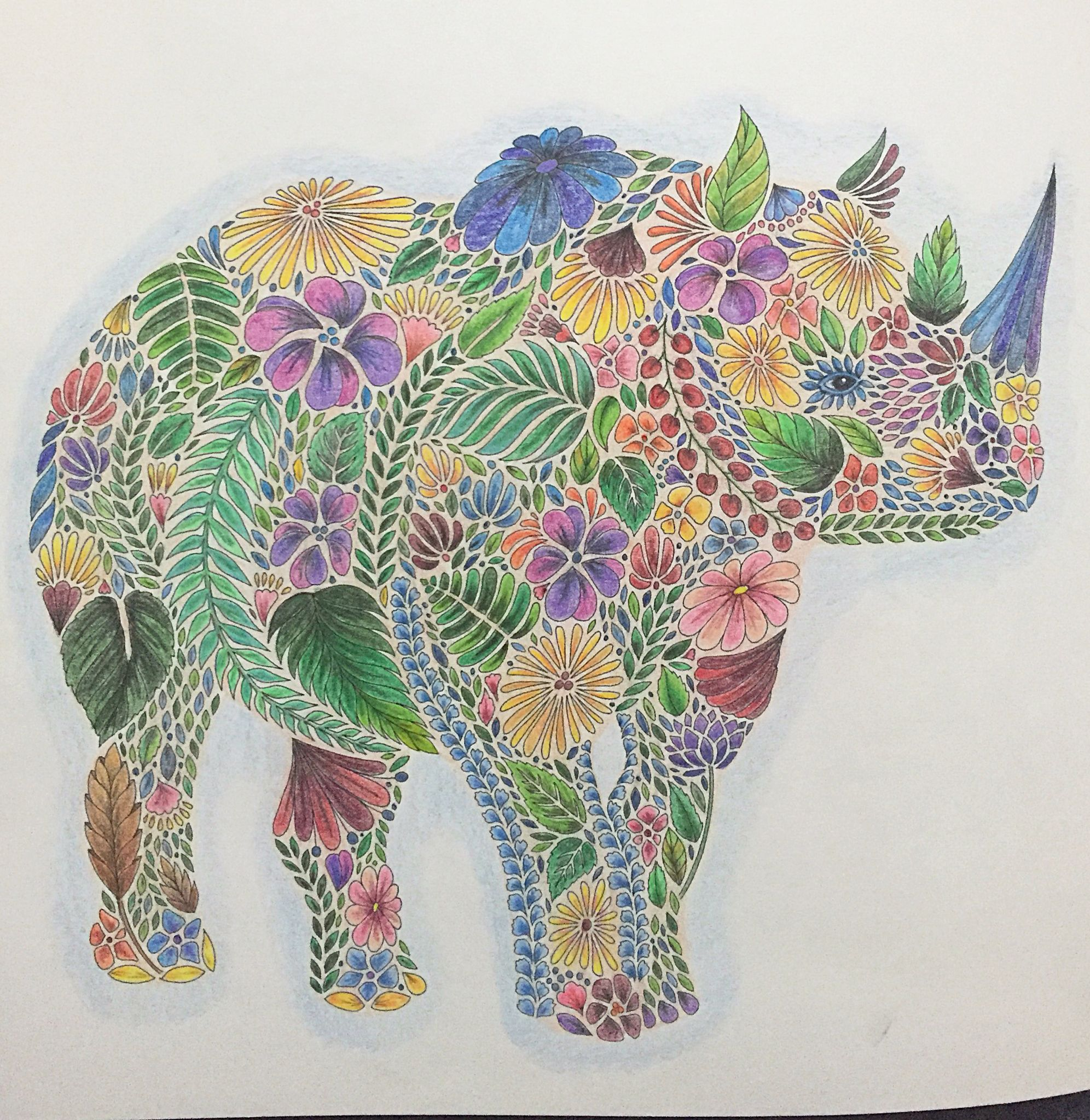 My First Colored Page Ms Rhino In My New Millie Marotta