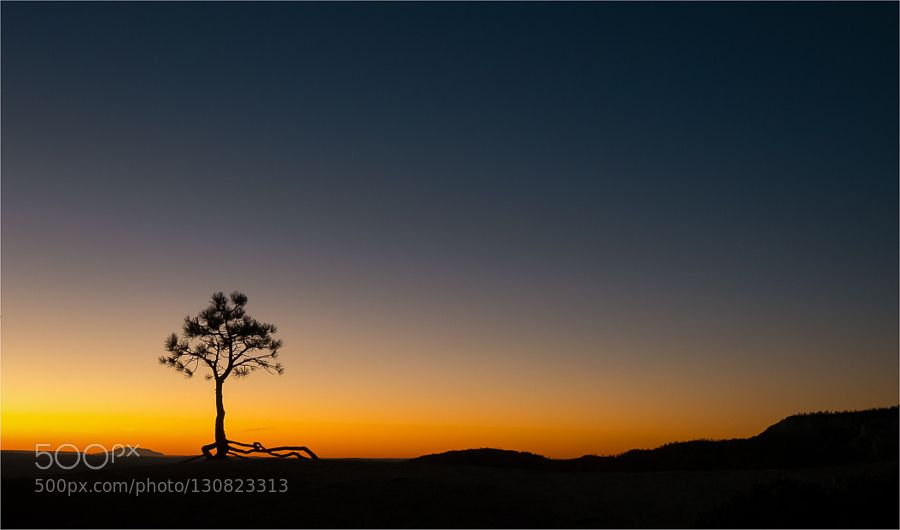 Southwest Sunrise by montrealmaggie #nature